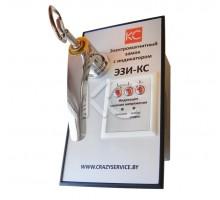 Электромагнитный замок с индикатором ЭЗИ