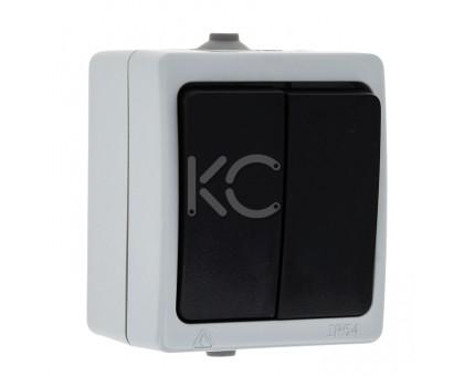 Выключатель 2-клавишный ОП 10А IP54 серый Дабрабыт