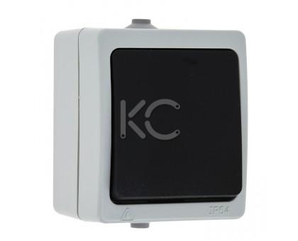Выключатель 1-клавишный ОП 10А IP54 серый Дабрабыт